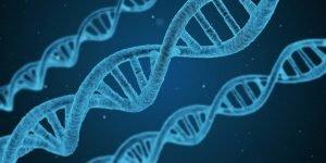 Il vaccino ci trasformerà tutti in OGM?